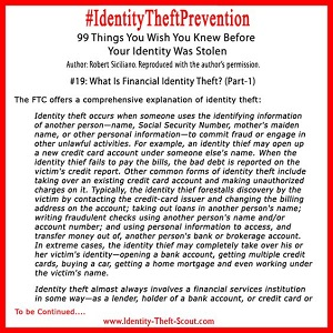 What is financial identity theft? (Part 1)