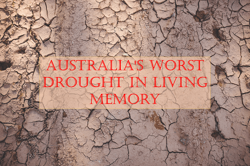 Devastating drought in Australia