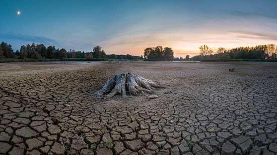 Drought News