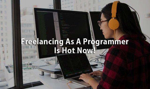 Freelancing Programmer